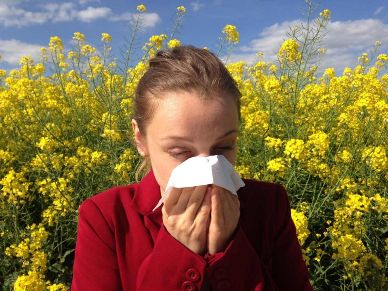 The connection between gut health and allergies