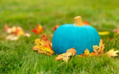 Food-Safe Halloween Through the Teal Pumpkin Project